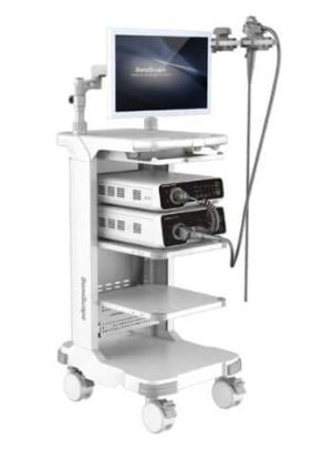 Endoscopios